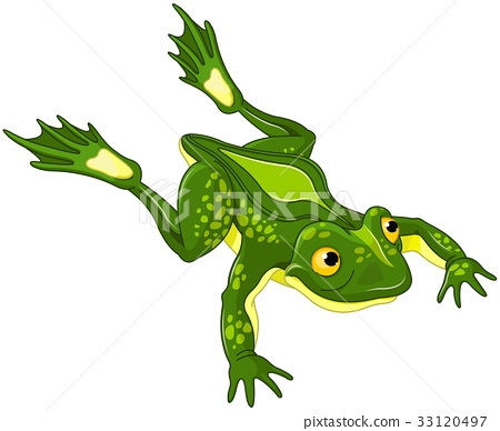 Frog 33120497