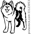 dog, dogs, eleventh sign of the chinese zodiac 33123053