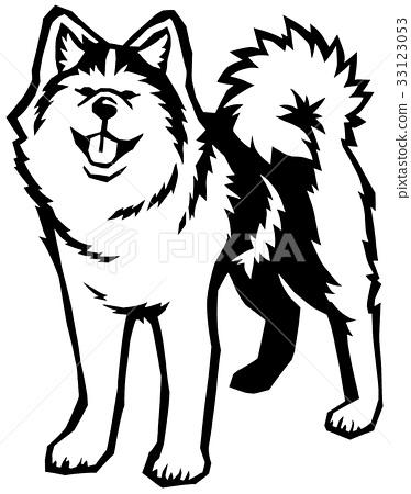可愛的秋田犬 33123053