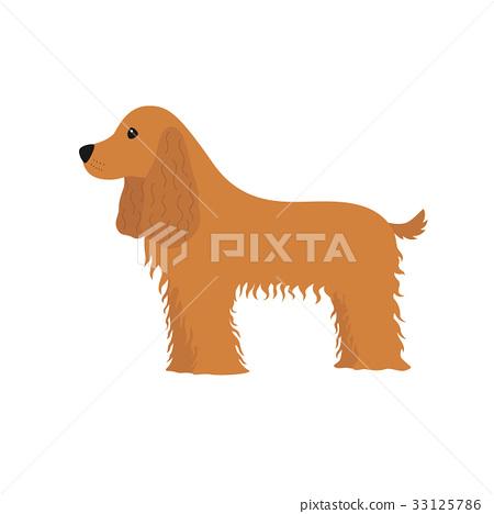 Dog Cocker Spaniel 33125786