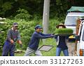 水稻种植水稻幼苗的制备 33127263