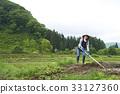 농사, 논, 농업 33127360