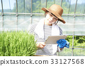 seeding, farmwork, straw hat 33127568