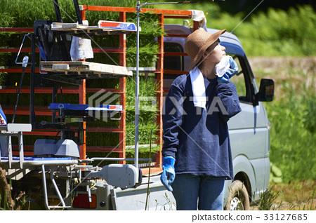 准备的妇女种植米 33127685