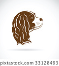 Vector of Cavalier King Charles Spaniel dog. 33128493