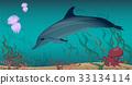 水族馆 景色 风景 33134114