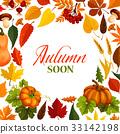 autumn, fall, vector 33142198