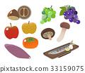 食品 水果 针鱼 33159075