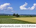 보리밭, 전원 풍경, 전원 경치 33159504