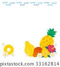 热带 水果 矢量 33162814