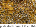 The bee hive is shot close-up in the summer on an  33170366