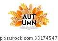 秋天 秋 树叶 33174547