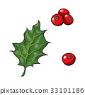 Mistletoe leave and red berries, holly berry 33191186