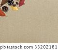 楓樹 紅楓 楓葉 33202161