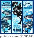 动物 海 矢量 33205101