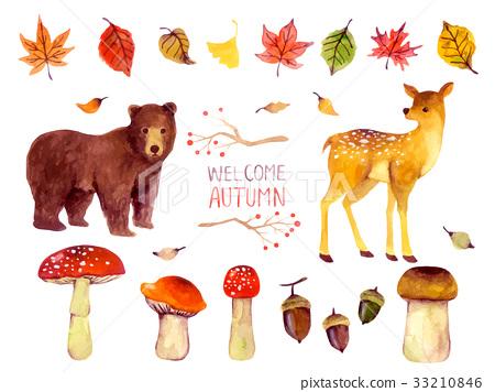 秋天的動植物 33210846