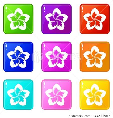 Frangipani flower icons 9 set 33211967