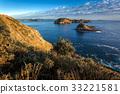 Coromandel Coastline 33221581