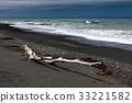 Driftwood on Rarangi Beach 33221582