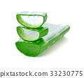 aloe vera fresh leaf isolated on white 33230775