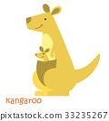 animals set - kangaroo 33235267