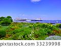 ฤดูร้อน,หน้าร้อน,แปลงดอกไม้ 33239998