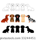 สุนัข,สุนัช,แด็กซันด์ 33244451