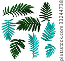 tropical leaf set 33244738