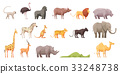 动物 野生生物 矢量 33248738