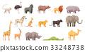 Wild Tropical Animals Set 33248738