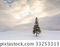 The Christmas Tree in Bie, Japan 33253313