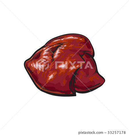 vector pork raw liver offal sketch isolated 33257178