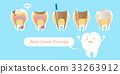 tooth with root canal therapy 33263912