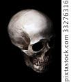 skull, skeletal, bone 33276316