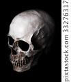 頭骨 骨架 骨頭 33276317