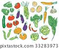蔬菜 多彩 富有色彩的 33283973