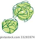 蔬菜白菜 33283974