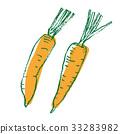 蔬菜 胡蘿蔔 根菜類 33283982