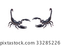 Scorpion on white background 33285226