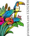 南国の楽園イメージ 33292836