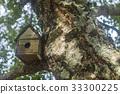 bird, nest, house 33300225