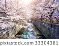 Cherry blossom lined Meguro Canal in Tokyo, Japan 33304381