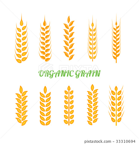 Set of simple wheats ears icons and wheat 33310694