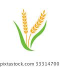 vector logo wheat 33314700