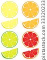vector, orange, lemon 33320233