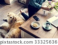 Woman Arranging Flowers with Goldent Retriever Dog Laying 33325636