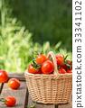 red, fresh, tomato 33341102