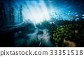 Underwater ocean waves ripple and tropical fish 33351518