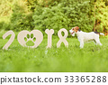 Adorable happy fox terrier dog at the park 2018 33365288