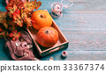 Picture of pumpkin, maple leaves 33367374